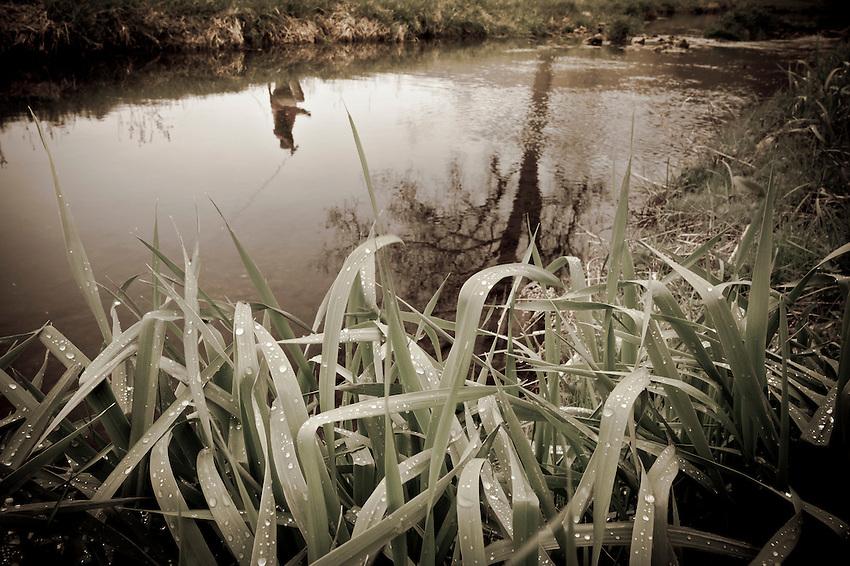 Fishing a small spring creek near Viroqua in Wisconsin's Driftless Area.