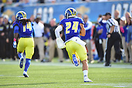 Newark, DE - OCT 29, 2016: Delaware Fightin Blue Hens defensive back Ryan Torzsa (24) intercepts Towson Tigers quarterback Ellis Knudson (8) during game between Towson and Delaware at Delaware Stadium Tubby Raymond Field in Newark, DE. (Photo by Phil Peters/Media Images International)