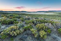 Red Desert of Wyoming