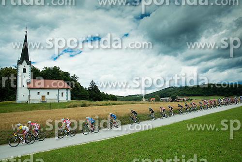 Peloton near Trebnje during Stage 4 of 22nd Tour of Slovenia 2015 from Rogaska Slatina to Novo mesto (165,5 km) cycling race  on June 21, 2015 in Slovenia. Photo by Vid Ponikvar / Sportida