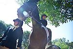 Los Altos Hills Horsemen's Association Summer Schooling Show---July 8, 2012