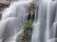 Spring Cascade II