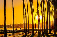 California-Santa Barbara-Cabrillo Blvd. & East Beach