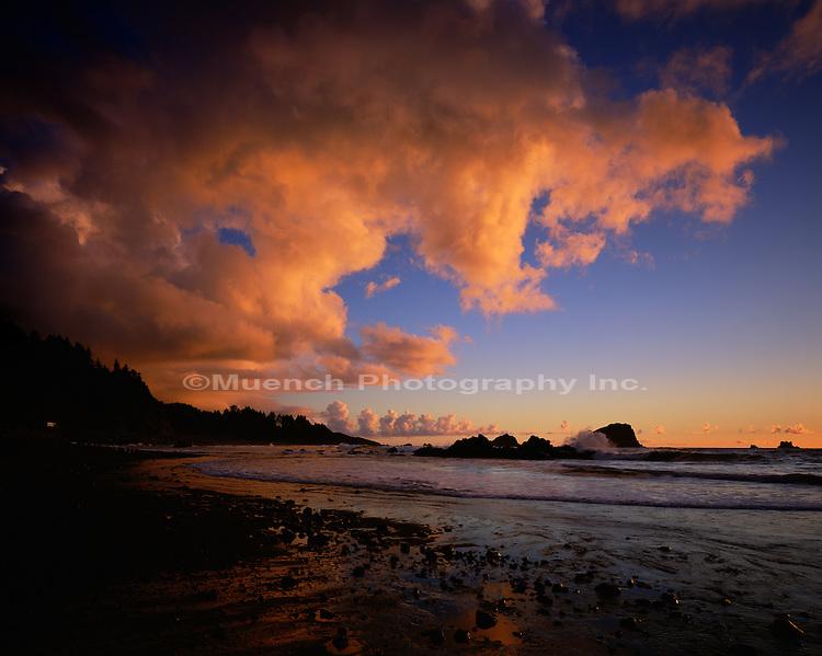Del Norte Coastline Redwood NP  CALIFORNIA