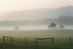 Foggy sunrise in Cades Cove