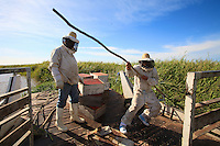 For navigational reasons, the migration takes place under a merciless sun. Because of the bee's aggressiveness, the men have to wear their protective suits throughout the transport.
