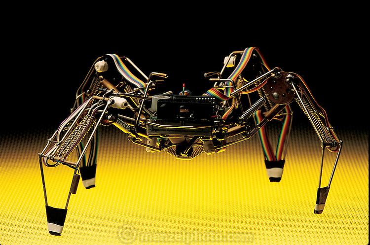 """As Mark Tilden's Spyder 1.0 approaches like a tiny but menacing arachnid, its circuits try to optimize actions, walking in this case, with minimal energy. Perturbed by the environment, its patented """"nervous net"""" seeks the minimum state, its legs moving almost randomly until it succeeds. In 1990, Spyder 1.0 was the first walking robot to use Tilden's nervous net control system. When Tilden first achieved such complex behavior from such minimal components, the results astonished some roboticists. Los Alamos, NM. From the book Robo sapiens: Evolution of a New Species, page 118-119."""