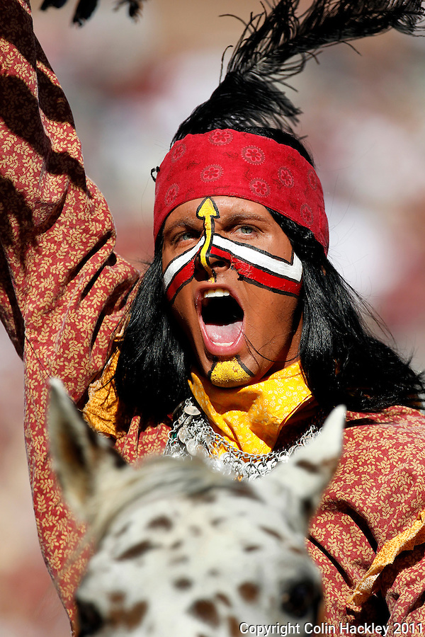 TALLAHASSEE, FL 10/22/11-FSU-MARY102211 CH-Florida State Mascot Osceola portrayed by Drake Anderson celebrates an FSU touchdown atop Renegade during first half action against Maryland Saturday at Doak Campbell Stadium in Tallahassee. .COLIN HACKLEY PHOTO