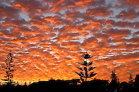 Sunrise over the Cottesloe Beach tennis courts.