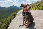 Rottie mix on Phelps Mt