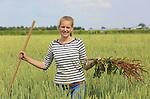 Foto: VidiPhoto<br /> <br /> RANDWIJK - Leuker dan vakkenvullen. De zestienjarige vakantiewerker Miek Brus moet dinsdag flink aan de bak bij biologisch akkerbouwer Andr&eacute; Jurrius in Randwijk, Gelderland. Door het groeizame weer groeit de zuring als kool en dat kost bij het 'schonen' van de 15 ha. zomertarwe -na het dorsen eind juli- extra werk. Daarom moet Miek samen met andere vakantiewerkers het onkruid met schop en hand verwijderen. Zuring verspreidt zich niet alleen via zaad, maar ook via het wortelstelsel. Op ekoboerderij De Lingehof van Jurrius worden geen bestrijdingsmiddelen gebruikt. Miek heeft dankzij haar diploma extra lang vakantie en vakkenvullen vindt ze saai. Het werk op de boerderij is afwisselend genoeg en &quot;je wordt er lekker moe van.&quot; Jurrius teelt zo'n 15 akkerbouwgewassen op 90 ha. grond.
