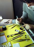 Zahnärztin Dr. dent. med. Doris Vera Kossack bei der Vorbereitung der Füllung einer Wurzelbehandlung