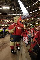 Cardiff, WALES.  Munster mascot before   the  2006 Heineken Cup Final,  Millennium Stadium,  between Biarritz Olympique and Munster,  20.05.2006. © Peter Spurrier/Intersport-images.com,  / Mobile +44 [0] 7973 819 551 / email images@intersport-images.com.   [Mandatory Credit, Peter Spurier/ Intersport Images].14.05.2006   [Mandatory Credit, Peter Spurier/ Intersport Images].