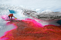 Scientist adding a harmless red dye to trace the water flow on the Greenland ice cap in summer.