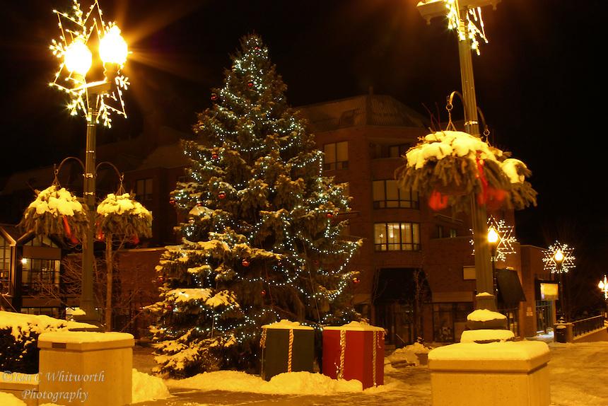Where To Get Christmas Lights
