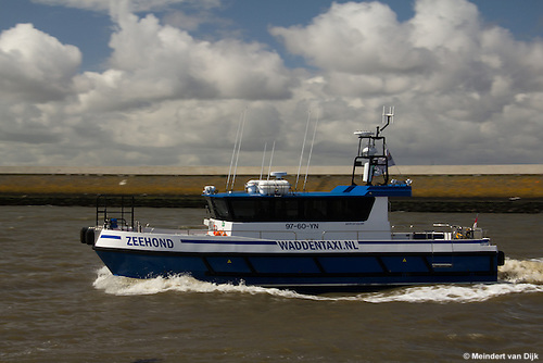 Waddentaxi Zeehond in zeehaven Harlingen