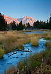 Wyoming, Teton National Park. Mt. Moran of the Teton Mountain Range with morning sun and the South Fork of the Snake River in autumn.