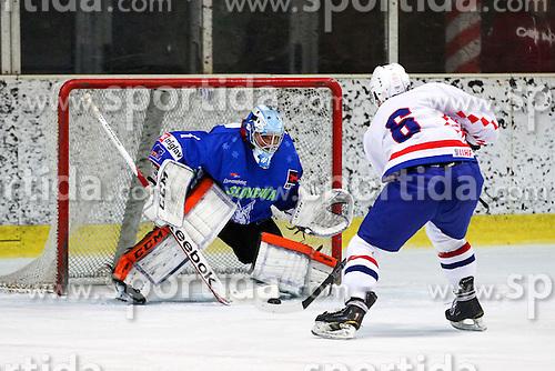 Mislav Blagus of Croatia vs Andrej Hocevar of Slovenia during friendly ice hockey match between Slovenia and Croatia, on April 12, 2016 in Ledena dvorana, Bled, Slovenia. Photo By Matic Klansek Velej / Sportida