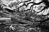 New Orleans Katrina Dec 2005