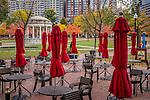 Fall foliage on Boston Common, Boston, Massachusetts, USA