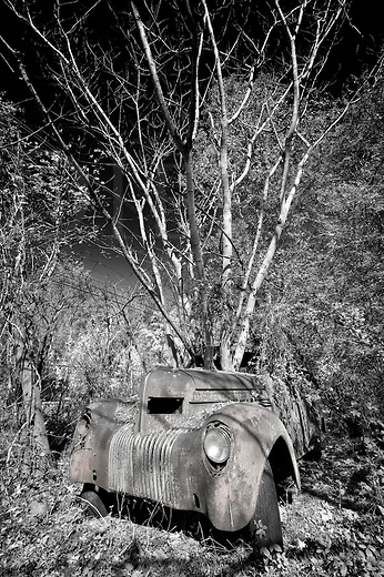 This old junker has been parked a very long time and it appears to be firmly rooted, so to speak. There is some confusion as to what it is...a Dodge, a Pontiac, a 1934...who knows for certain, but there is no doubt where it is, and that is a corner of an old junkyard in Georgia, way off the beaten path. Nowadays it is a deluxe penthouse for uper-crust squirrels who enjoy a radio, stick shift, and plush seats.<br /> <br /> The image was originally in color, but a conversion to black and white and a darkening of the sky let the branches stand out and more character bubble up to the surface. Using a wide angle lens added to the strangeness, and just a tad of hand tinting the rust back onto the car helped it stand out from the jungle. I'm glad to have captured this nugget from backwoods Americana...