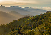 Last Light, Ventana Wilderness, Los Padres National Forest, Big Sur, Monterey County, California