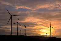 Eolian energy: biggest wind farm (10 MW) in South America using German technology at Prainha de Aquiraz near Fortaleza, Ceara, Brazil