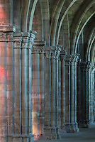 Columns of the nave, seen from the South ambulatory, in the Basilique Saint Remi or Abbey of St Remi, Reims, France. The 11th century, mainly Romanesque, church, contains the relics of St Remi, the Bishop of Reims, who converted Clovis, the King of the Franks, to Christianity in 496 AD. The abbey is a UNESCO World Heritage Site. Picture by Manuel Cohen