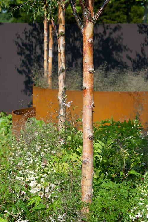 """""""I am, because of who we are"""" show garden, designed by Caroline Comber with Petra Horackova, Hampton Court Flower Show 2011."""