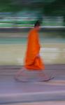 Monk Walking, Siem Reap, Cambodia