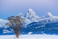 A frosty sunset in Teton Valley Idaho. The Grand Tetons rise 8,000 feet above this picturesque valley.