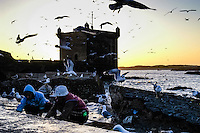 Fishermen surrounded by seagulls. Essaouira is a city on the Moroccan Atlantic coast. Fortress walls originally enclosed the entire city.