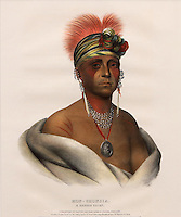 Mon-Chonsia or White Plume, a Native American chief from present-day Kansas, hand-coloured lithograph, 1836, by Cephas G Childs, 1793-1871, American artist, after an original painting by Charles Bird King, 1785-1862, American artist, as copied by Henry Inma, from the collection of Denver Art Museum, Denver, Colorado, USA. Mon-Chonsia formed part of a delegation to Washington DC in 1821-22 asking for peace on the Western borders. White Plume wears earrings of wampum and hair pipes, trade objects made from shell. The lithograph was published in History of the Indian Tribes of North America, published 1844. Picture by Manuel Cohen