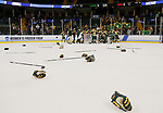 ST CHARLES, MO - MARCH 19:  The Clarkson Golden Knights litter the ice with sticks and gloves as they celebrated their 3-0 victory over Wisconsin Badgers to win the Division I Women's Ice Hockey Championship held at The Family Arena on March 19, 2017 in St Charles, Missouri. (Photo by Mark Buckner/NCAA Photos via Getty Images)