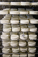 Whole goat and sheep cheese aging in the cave at Fifth Town Artisan Cheese Co. in Prince Edward County, Ontario