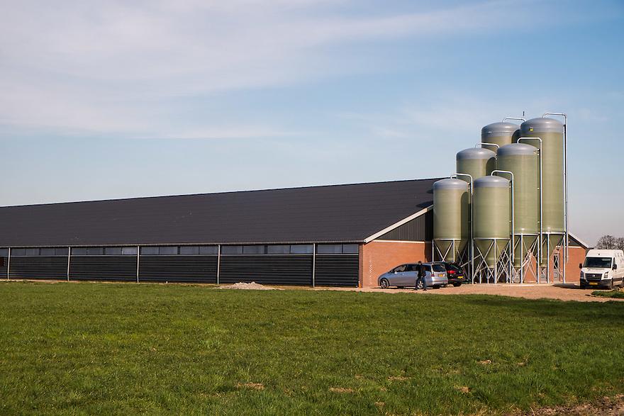Nederland, Omgev. Almelo, 4 maart 2014<br /> Enorme stal voor koeien. Megastal.<br /> Foto(c): Michiel Wijnbergh