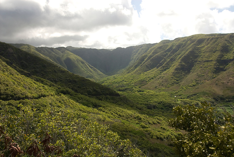 Hawaii: Molokai, scenic view of Halawa Valley..Photo himolo125-72045.Photo copyright Lee Foster, www.fostertravel.com, lee@fostertravel.com, 510-549-2202