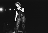 JANIS IAN (1978)