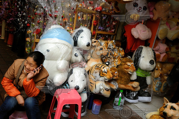 Samples of toys on display at a wholesale stall in the centre of town.