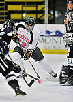29 January 2012: University of Vermont Catamount forward Chelsea Rapin, a Senior from Walled Lake, MI, in action against the University of New Hampshire Wildcats at Gutterson Fieldhouse in Burlington, Vermont. The Lady Cats, dressed in their Breast Cancer Awareness jerseys, edged out the Wildcats 2-1 to split their Hockey East twin-game weekend series. Mandatory Credit: Ed Wolfstein Photo