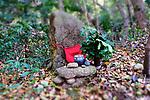 Kumano Kudo, pilgrimage trails, Japan 0417