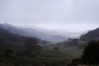 Dead Horse Gap, Thredbo, Snowy Mountains, NSW, Australia