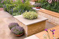 Beautiful stone patio with wall garden benches, containers of herbs thymes Thymus &amp; Lavender Lavandula stoechas, flower plantings of Irises, Astrantia, salvia, roses Rosa, fennel, boxwood Buxus, Euphorbia, for pretty backyard landscaping