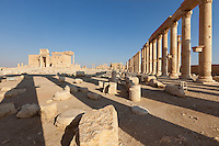 Walled courtyard, or temenos, surrounding the cella, or main temple, Palmyra, Syria. Ancient city in the desert that fell into disuse after the 16th century.