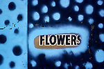 Painted over Flower sign on store front, Hollywood, CA, 1977