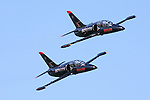 Two aircraft of the Patriots Jet Demonstration Team make a pass in front of the crowd at the 2008 San Francisco Fleet Week. The Patriots fly the Czechoslavakian built L-39 Albatross Trainer.