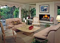 Living Room, Contemporary, design, Fireplace, home;  Residential, interior, lifestyle; decor; .jpg