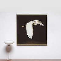 "Kroll: Egret In Flight, Digital Print, Image Dims. 34"" x 34"", Framed Dims. 35"" x 35"""
