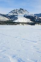 Wrangell-St. Elias National Park, Alaska. Sourdough Rock glacier along Sourdough mountain, snow covered Nizina river in foreground.