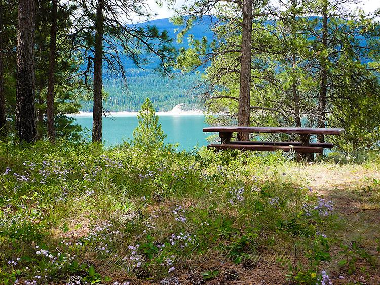 Picnic spot among the wildflowers at Lake Koocanusa, Montana.